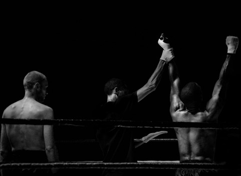 boxer-boxing-fight-3797-481x350